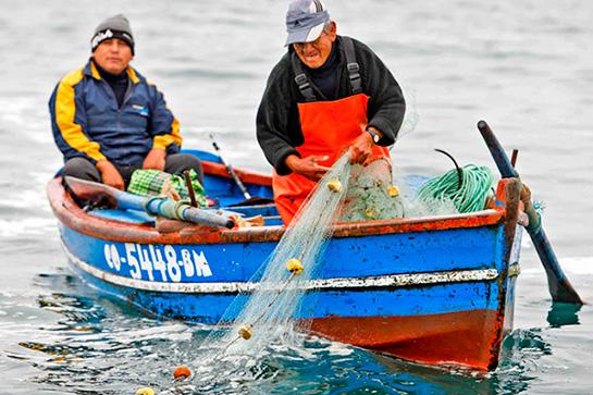 koremanta - redes para pesca